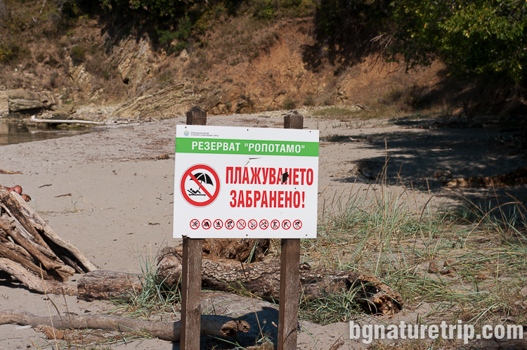 Табела указваща забрана за плажуване на пясъците край устието на Ропотамо