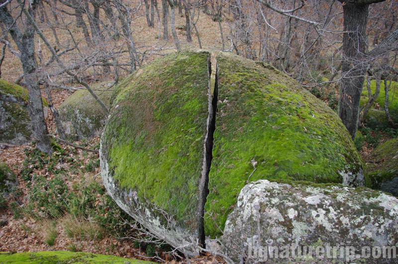 Ропотамо-скала-разцепена-ерозия