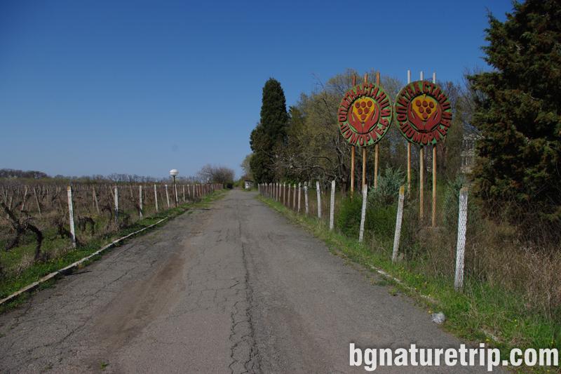 Поморие-културен-туризъм тракийска гробница път