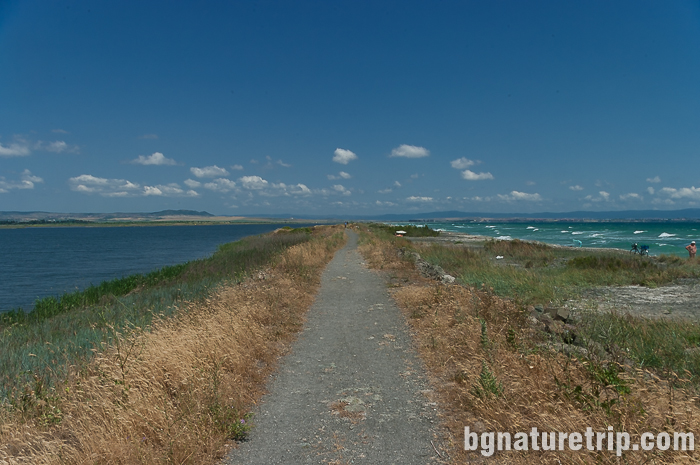 Маршрут за велосипед и бягане около Поморийско езеро