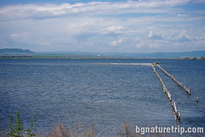 Изглед към Поморийско езеро