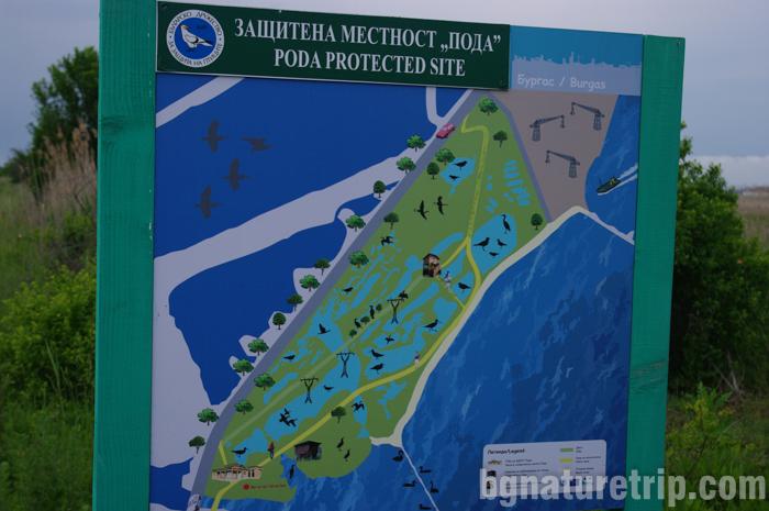 Бургас-Пода-карта-местност-укрития-наблюдение-птици