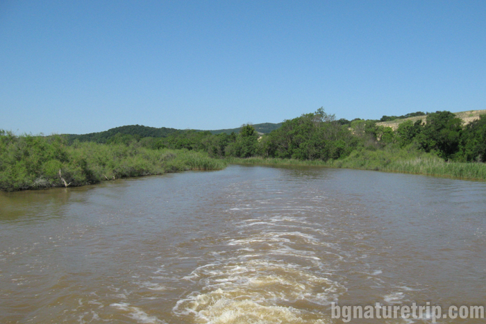 река-Ропотамо-лодка-разходка-екскурзион-атракция-устие-река