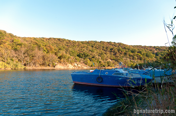 Рибарски пристан. Мястото е посещавано много от рибарски лодки през пролетта и есента, когато морските води около устието са богати на риба.