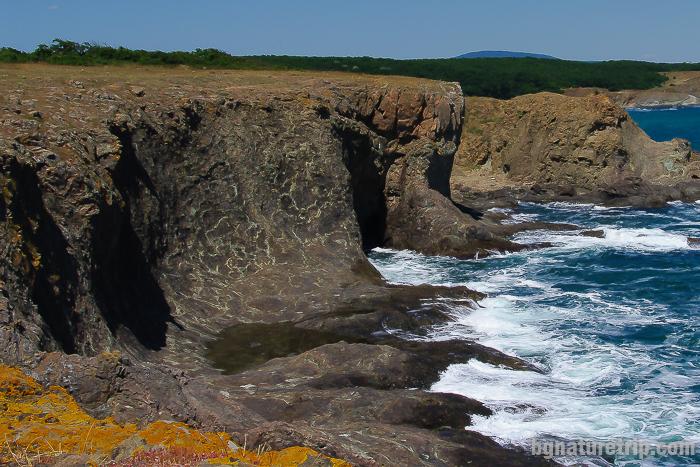 Тюленовата пещера около Липите