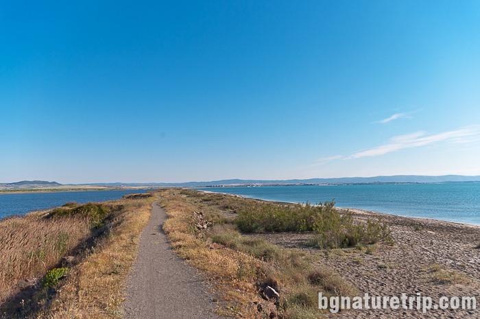 """Разходка по екопътеката между Поморийско езеро и морето. Местните наричат тази местност """"Ивицата"""""""