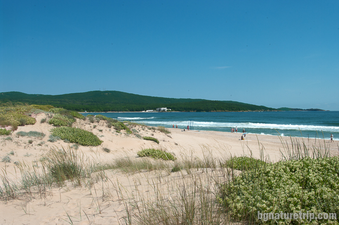 """Пясъчните дюни """"Стамополу"""" обявени за защитена местност"""