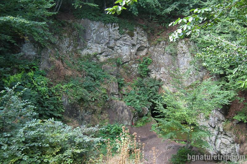 Гробницата на Бастет край Малко Търново със скалния релеф на котка