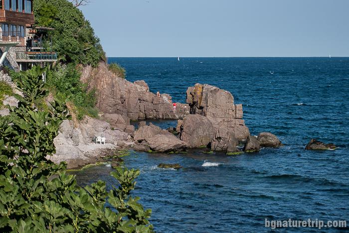 Скалите като табуретки на полуостров Скамния (табуретковия полуостров)