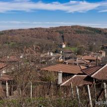 Панорамна гледка към село Бръшлян
