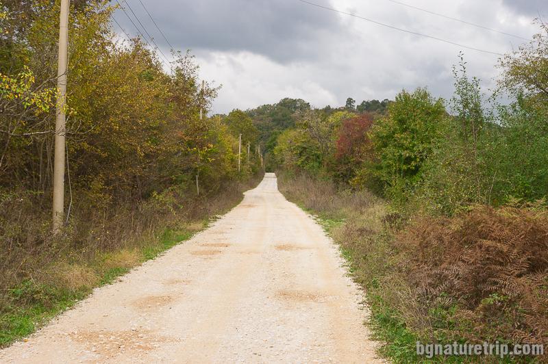Пътят настлан с чакъл, край река Велека.