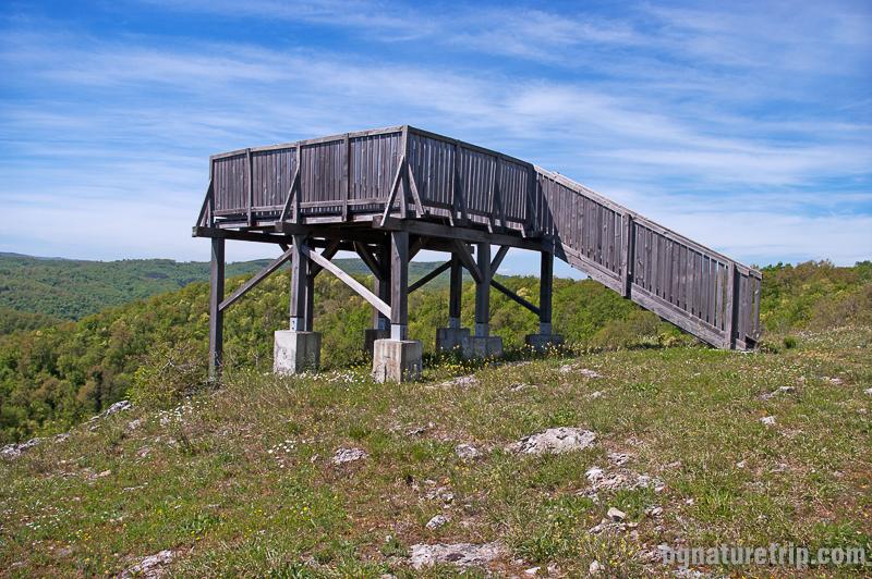 Платформата за наблюдение меандрите на река Велека край Петрова нива