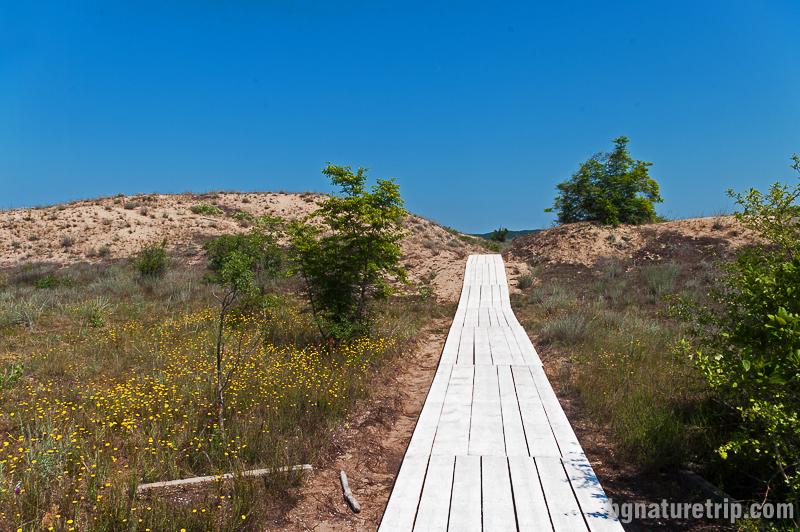 Дървени пътеки плаж Аркутино