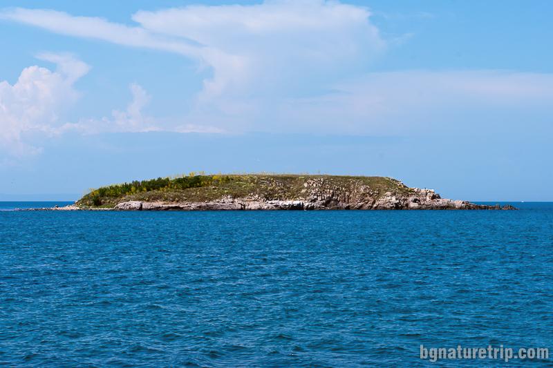 Змийският остров - кръстен така, тъй като в миналото е бил обитание на множество водни змии