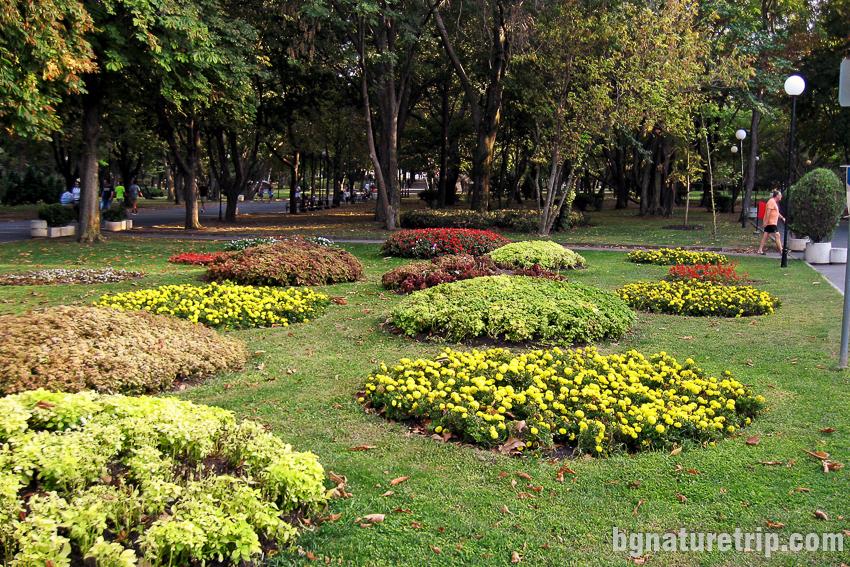 Морската градина на Бургас
