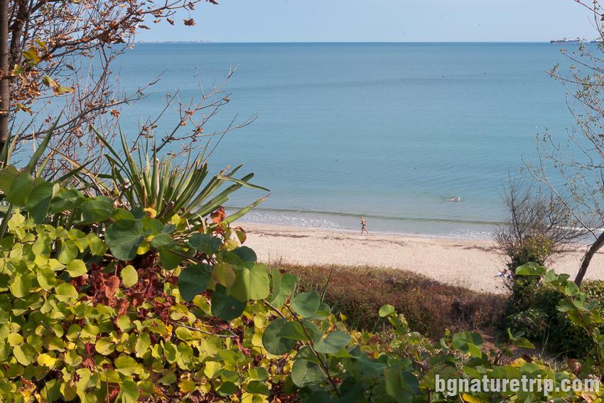 Плажът на Бургас до Морската градина