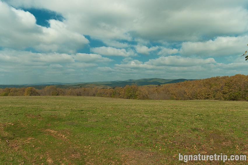 Изглед към поляните по пътя