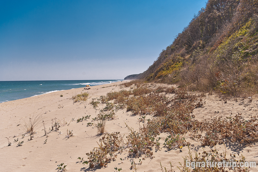 Диви плажове, подходящи за нудисти