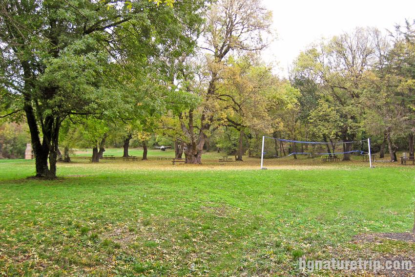 Поляната на Парк Росенец ( Отманли ) с мрежата за волейбол
