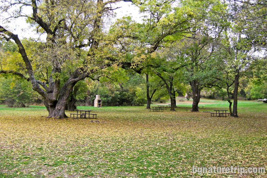 Парк Росенец - налични са множество огнища, пейки и маси за пикник или барбекю сред природата