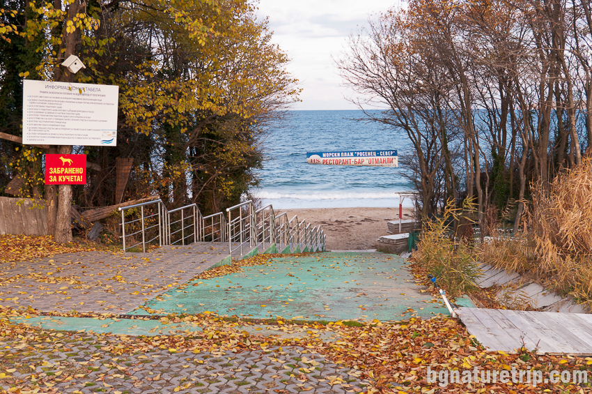 Стълбите водещи към плажа на парк Росенец